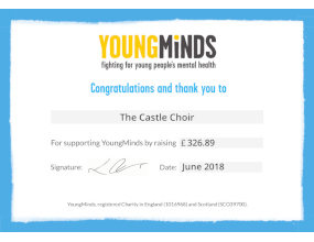 YoungMinds fundraising poster